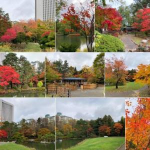 中島公園の紅葉、白サギ