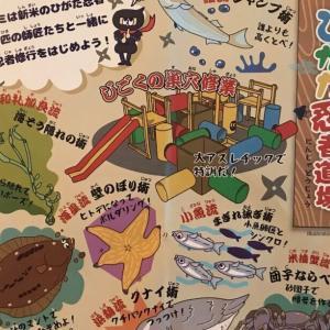 ひがた忍者道場+夏休み自由研究相談会 船橋 三番瀬学習館