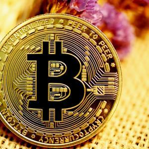仮想通貨の将来 ビットコイン アルトコインに未来はあるか?