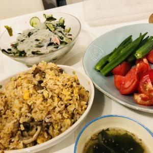7/31.8/1晩御飯✩.*˚ほぼ残り物😂😂笑&炒飯、餃子とわんこのご飯