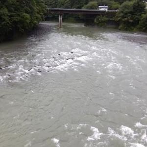 今日の那賀川上流②