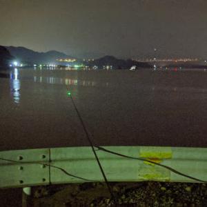 夏の夜はのんびり防波堤でアナゴ釣り(釣り方からポイントまで)