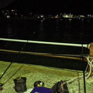 【釣行記】2021年9月 瀬戸内アナゴを狙って3回連続ホゲました。