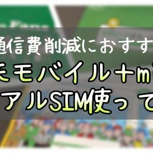 【通信費削減にお勧め】楽天モバイル+mineoのデュアルSIMを使ってみた。