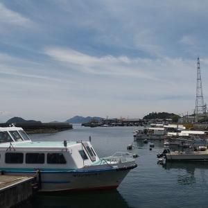 ウサギの島(大久野島)に行った話