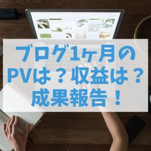 初心者ブログ1ヶ月目!PVは?収益は?【雑記ブログの成果報告】