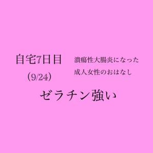 【自宅療養7日目…!!(9/24)】ゼラチン強い