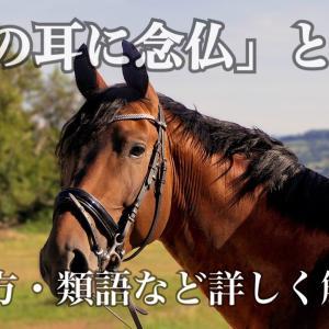 「馬の耳に念仏」の意味とは?使い方・例文・類義語などを詳しく解説!