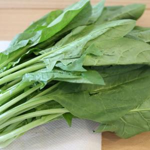 【離乳食(ごっくん期)】失敗しない!ほうれん草、小松菜のペーストと裏ごし器の洗い方