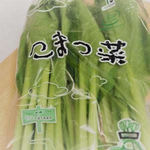 【離乳食(ごっくん期)】失敗しない!小松菜のペースト