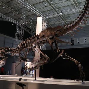 DinoScience 恐竜科学博に行ってきました
