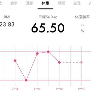 【65.5キロ↑】ダイエット記録34と今日のワンコ