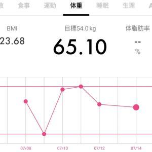 【65.1キロ↓】ダイエット記録35と今日のワンコ