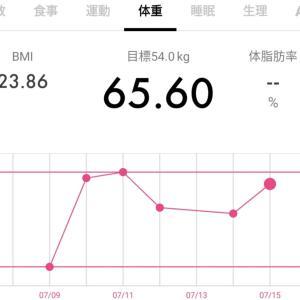 【65.6キロ↑】ダイエット記録36と今日のワンコ