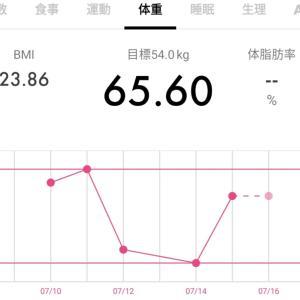 【65.6キロ】ダイエット記録37と今日のワンコ