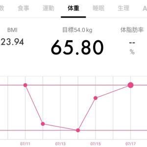 【65.7キロ↑】ダイエット記録38と今日の犬