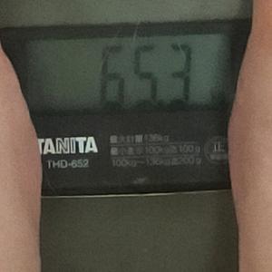 ダイエット記録51(65.3キロ)と犬