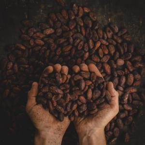 メキシコの味が楽しめる!メキシコシティの美味しいチョコレート屋『QUE BO!』