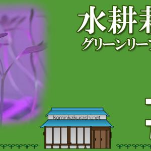 水耕栽培「グリーンリーフレタス」日記7~16日目 #04