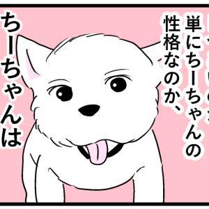 ちーちゃんと風船③