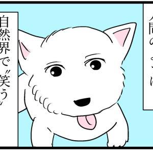 わんわんニュース②