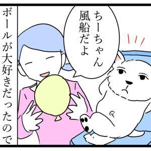 ちーちゃんと風船②初めての風船