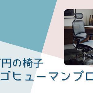 【エルゴヒューマンプロ】高級オフィスチェアの座り心地をレビュー|腰を支えるランバーサポートが優秀
