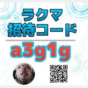 ラクマ招待コード【a3g1g】新規会員登録完了で100円分のポイント