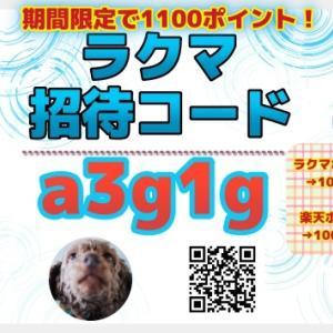 ラクマ招待コード(a3g1g)入力で1100円分のポイント付与【友達招待キャンペーン開催中】
