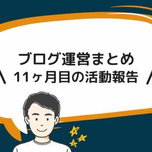 【ブログ運営】11ヶ月目の活動報告まとめ【PV / 収益 / 記事数】