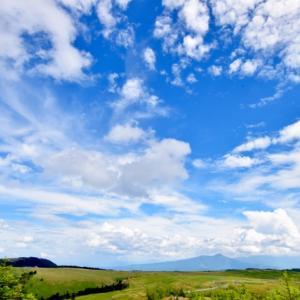 なんとなく空を見上げたら、空が青かった。私はきっと病んでいた。