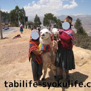 南米旅行記7 クスコ観光