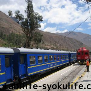 南米旅行記13 日本の真裏ブラジルへ