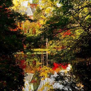 北海道庁赤れんが庁舎の池