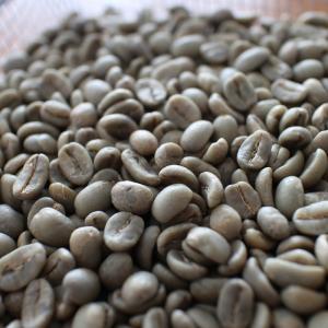 知っておきたいコーヒーの基礎知識 コーヒー豆ってなんですか?
