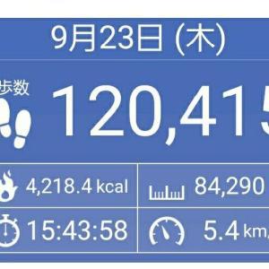 84km歩いてみました! 1日100km散歩の道 NO.1