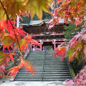 日本全県制覇2周目 34県目は栃木の旅(2020年11月)