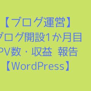【ブログ運営】ブログ開設1か月目のPV数・収益 報告【WordPress】