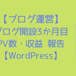 【ブログ運営】ブログ開設3か月目のPV数・収益 報告【WordPress】