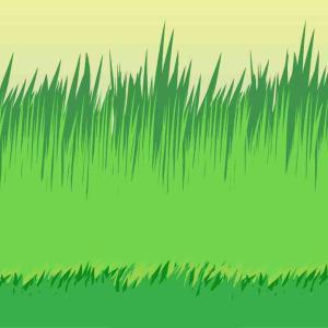 ニート、草刈機を購入する