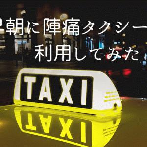 【体験談】陣痛タクシー料金は?口コミ通り? 利用してみたin沖縄