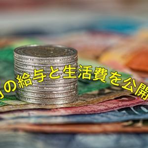 7月の給与と生活費を公開 ボーナス最高!