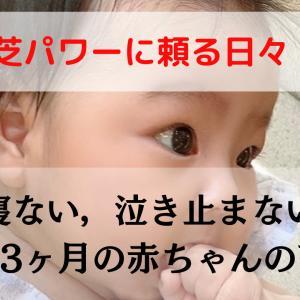 【霊芝パワーに頼る日々】寝ない、泣き止まない。生後3ヶ月の赤ちゃんの育児。