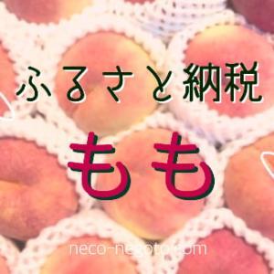 【ふるさと納税】美味しい桃が5kgも〜山形県村上市から届いたよ