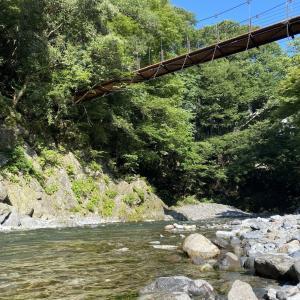 【day26】森と川に癒されて【アフリカ出国まで残り4ヶ月を綴るブログ!】