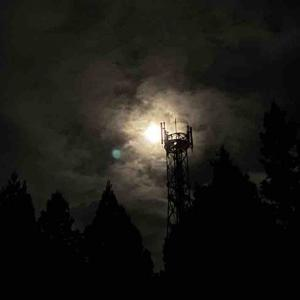【day77】lune【アフリカ出国まで残り3ヶ月を綴るブログ!】