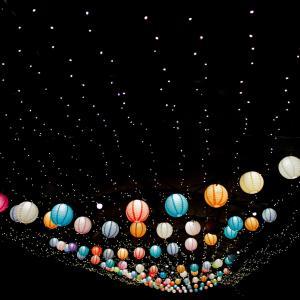 【はなぶんサンクスイルミ2021】大阪・花の文化園のライトアップ。屋台はあるの?