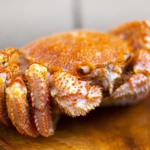 【2021年度】お中元・夏ギフト|百貨店・スーパー別人気・おすすめの魚介ギフト