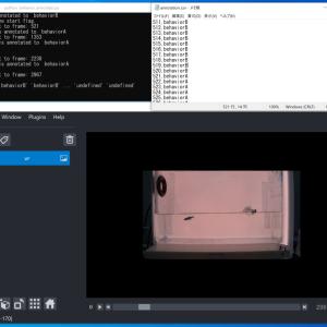 【Python, 画像処理, napari】Pythonの画像ビューワ napariを使って動画のアノテーションツールを作ってみる