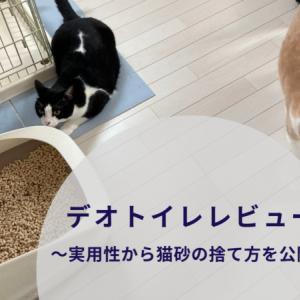 【デオトイレレビュー】システムトイレと言ったらコレ!実用性から猫砂の捨て方を公開!!